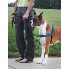 Deluxe Easy Walk® Harness-Medium-Ocean
