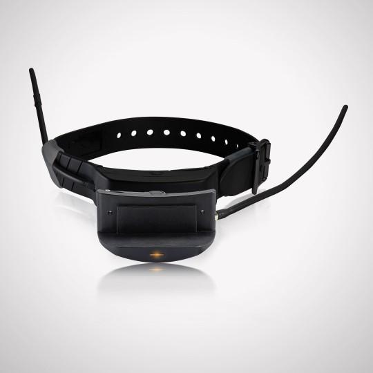 TEK Series 1.0 E-Collar Module