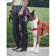 Deluxe Easy Walk® Harness-Medium-Rose