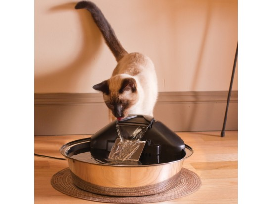 Drinkwell® Zen Pet Fountain