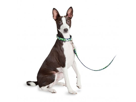 Fido Finery® Quick Snap Collar