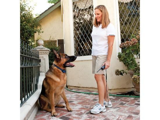 Vibration PLUS Remote Trainer Add-A-Dog® Collar