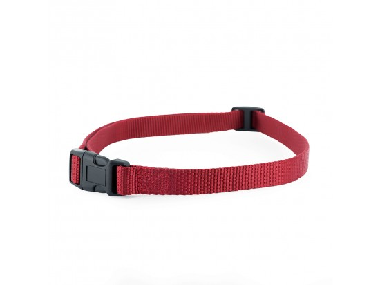 Bark Collar/Stay + Play Fence Replacement Collar Strap