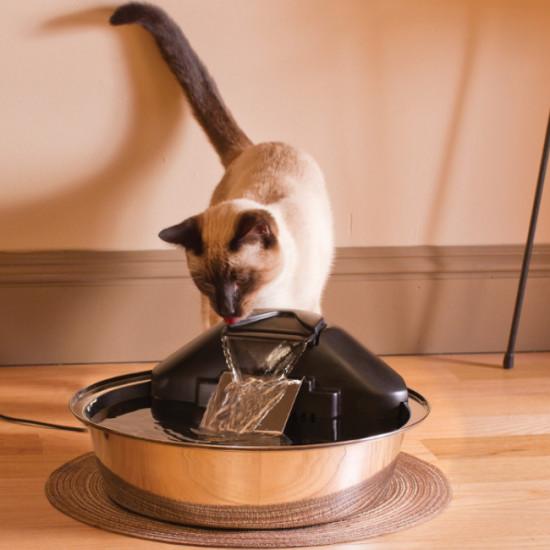 Drinkwell® Zen Pet Fountain