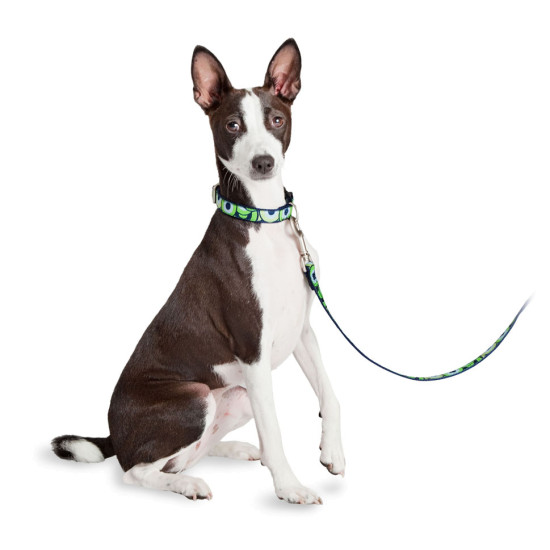 Fido Finery® Martingale Collar