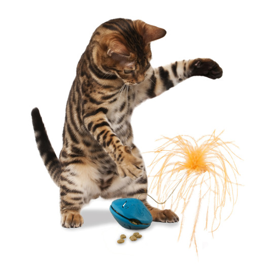 Twist 'n Treat™ Teaser Cat Toy