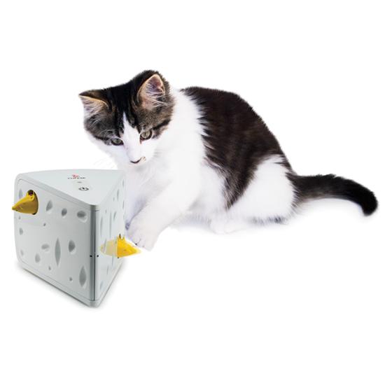 Cat Holiday Bundle