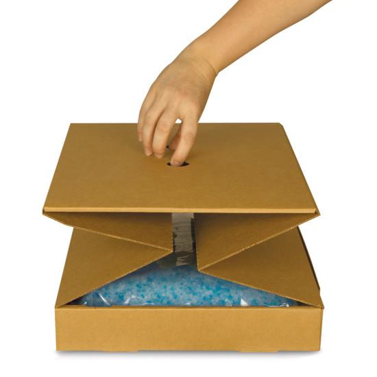 Disposable Litter Box