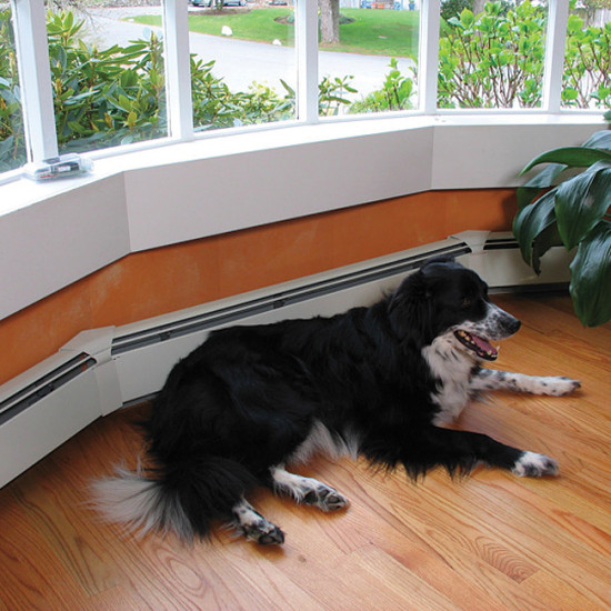 ScatMat® Pet Proofing Mats