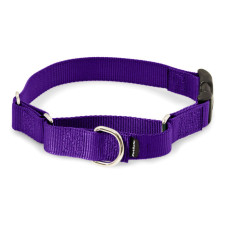 Martingale Collars with Quick Snap Buckle