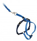 Come With Me Kitty™ Cat Harness, Cat Leashes