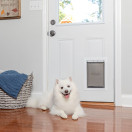 Extreme Weather Aluminum Pet Door™