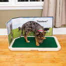 Piddle Place™ Pet Potty Protective Guard