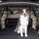 Happy Ride™ Metal Dog Barrier