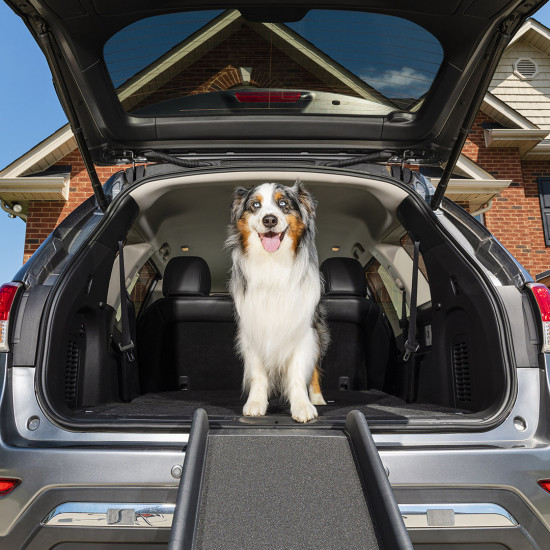 Happy Ride™ Folding Dog Ramp