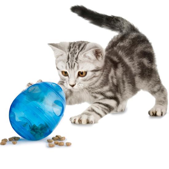Cat Flaps Food Tech
