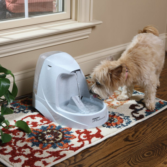 Drinkwell® Platinum Pet Fountain