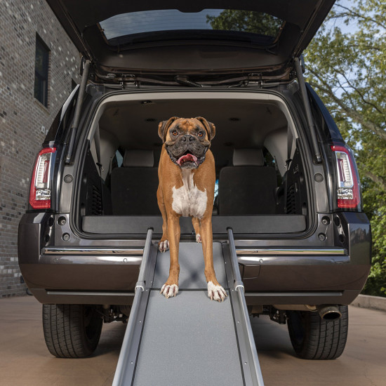 Happy Ride™ Compact Telescoping Dog Ramp