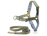 Easy Walk® Chic Designer Harness & Leash