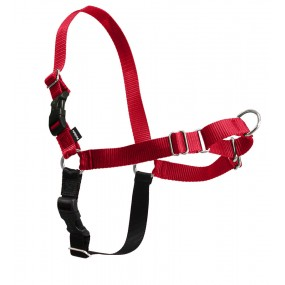 Easy Walk® Harness