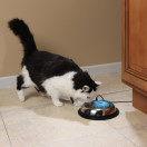 Drinkwell® hy·drate™ Water Bowl Filtration